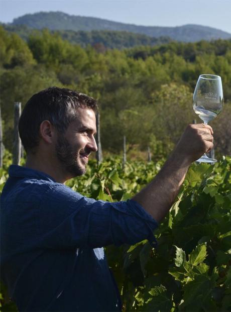 Igor Radovanović Winemaker i enolog Merga Victa i Dalmatian Dog vinarije