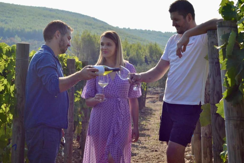 Igor Radovanović gušta s Nikolom Miroševićem i zagonetnom damom u vinogradu Pošipa