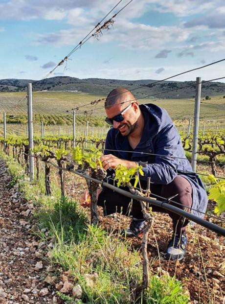 Juraj Sladić Winemaker i enolog Testament vinarije
