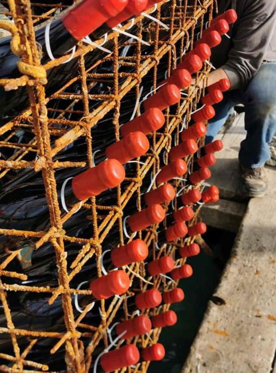 Kavez s 3300 boca vina Testament Babića 2017. uronjena su na 20-25 metara dubine pod morem i tako ih odležavamo
